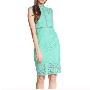 BARDOT Lace Sheath Dress In Mint Green Size 8